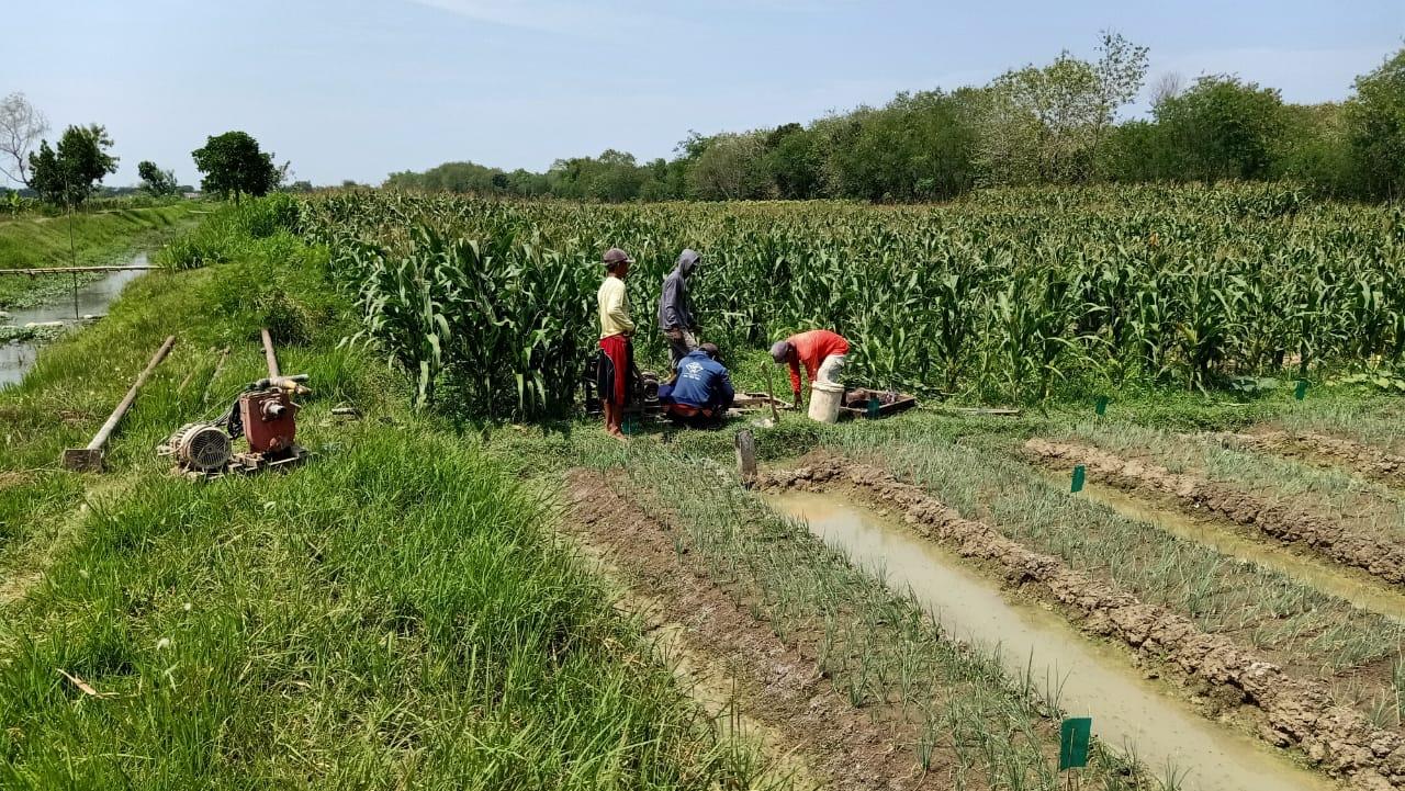 Dinas Pertanian Bojonegoro Bantu Sumur Bor Untuk Petani Samberan